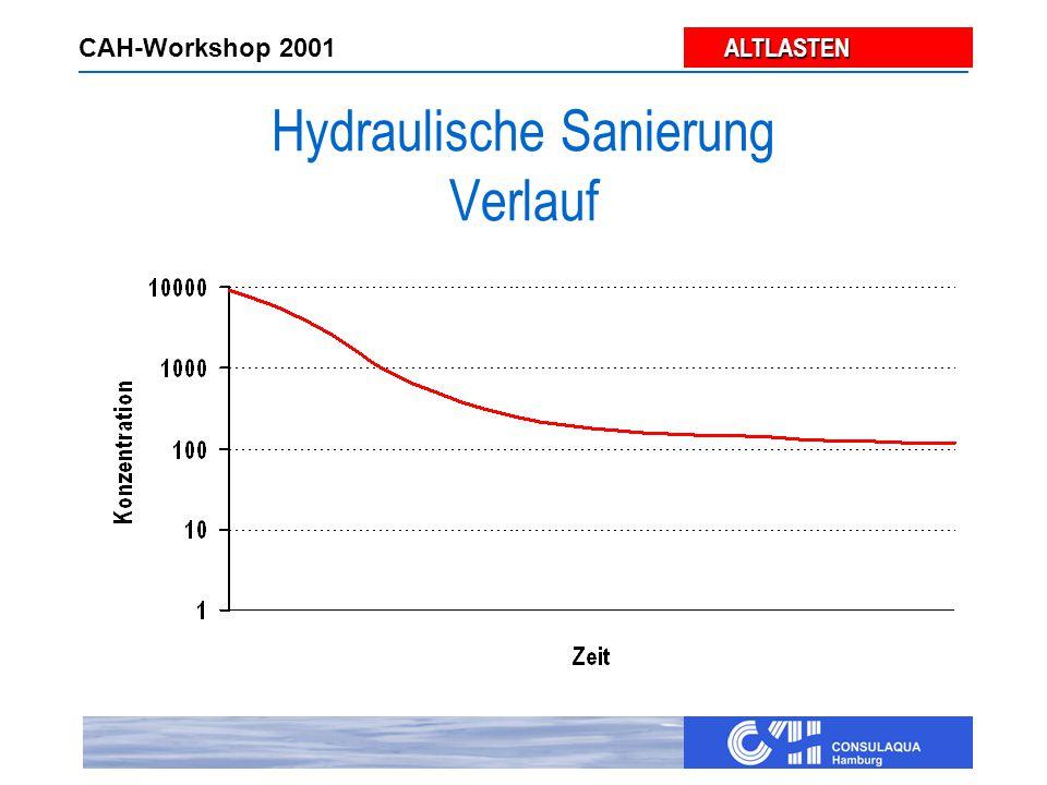 ALTLASTEN ALTLASTEN CAH-Workshop 2001 Hydraulische Sanierung Verlauf