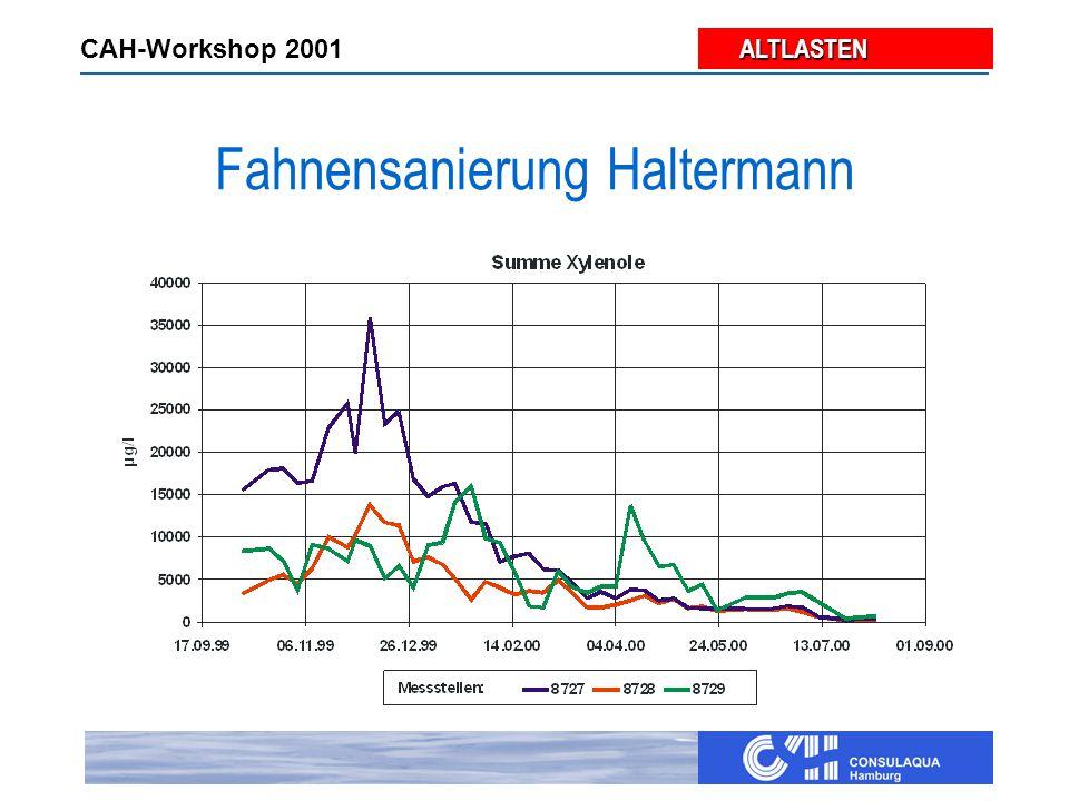 ALTLASTEN ALTLASTEN CAH-Workshop 2001 Zusammenwirken Hydraulik - Biologie Hydraulik -Emmissionssicherung -Verteilung der Zusatzstoffe -Milieuveränderung -Schadstoffentnahme In-situ-Bioprozesse -Schadstoffmobilisation -Schadstoffelimination (Mineralisation) -Abbau organischer und anorganischer Depots