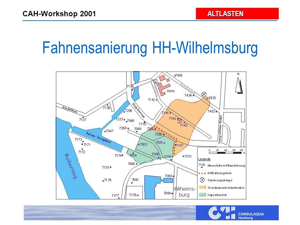 ALTLASTEN ALTLASTEN CAH-Workshop 2001 Fahnensanierung HH-Wilhelmsburg