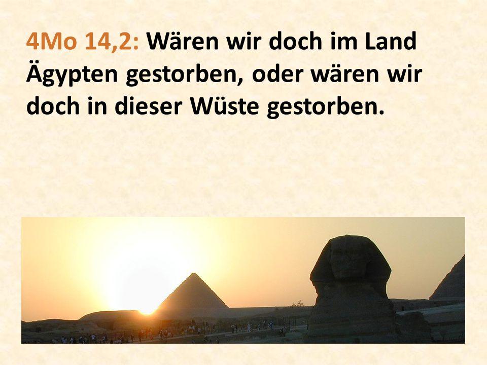 4Mo 14,2: Wären wir doch im Land Ägypten gestorben, oder wären wir doch in dieser Wüste gestorben.