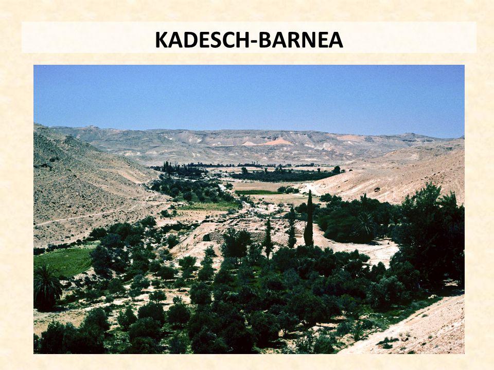 KADESCH-BARNEA