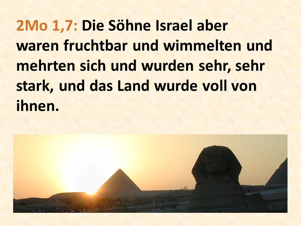 2Mo 1,7: Die Söhne Israel aber waren fruchtbar und wimmelten und mehrten sich und wurden sehr, sehr stark, und das Land wurde voll von ihnen.