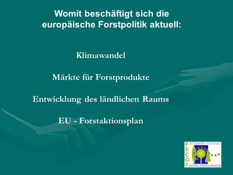 Womit beschäftigt sich die europäische Forstpolitik aktuell: Klimawandel Märkte für Forstprodukte Entwicklung des ländlichen Raums EU - Forstaktionsplan