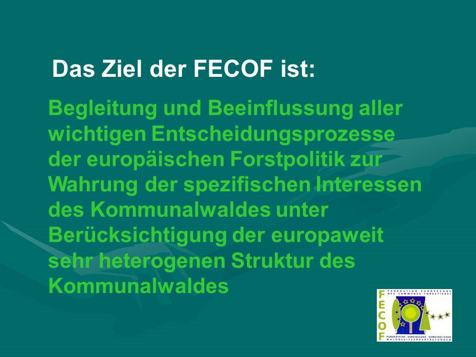 Begleitung und Beeinflussung aller wichtigen Entscheidungsprozesse der europäischen Forstpolitik zur Wahrung der spezifischen Interessen des Kommunalwaldes unter Berücksichtigung der europaweit sehr heterogenen Struktur des Kommunalwaldes Das Ziel der FECOF ist: