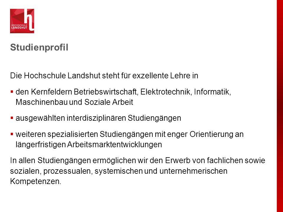 Studienprofil Die Hochschule Landshut steht für exzellente Lehre in  den Kernfeldern Betriebswirtschaft, Elektrotechnik, Informatik, Maschinenbau und