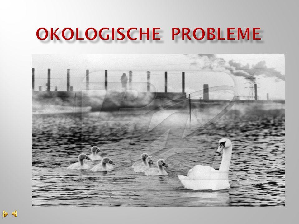  Luftverschmutzung, Saurer Regen, Wasserverschmutzung, das Ozonloch, die Tiereaussterbung, die Mullhaufen