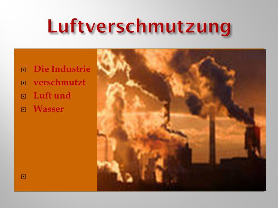  Die Industrie  verschmutzt  Luft und  Wasser 