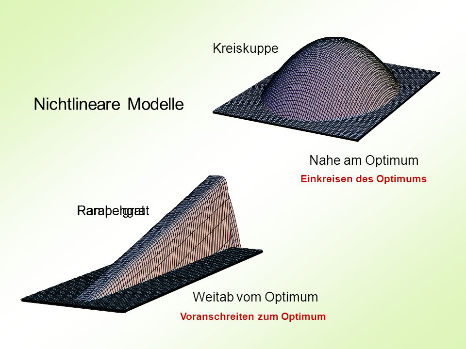 Nichtlineare Modelle Weitab vom Optimum Nahe am Optimum Parabelgrat Kreiskuppe Einkreisen des Optimums Voranschreiten zum Optimum Rampengrat