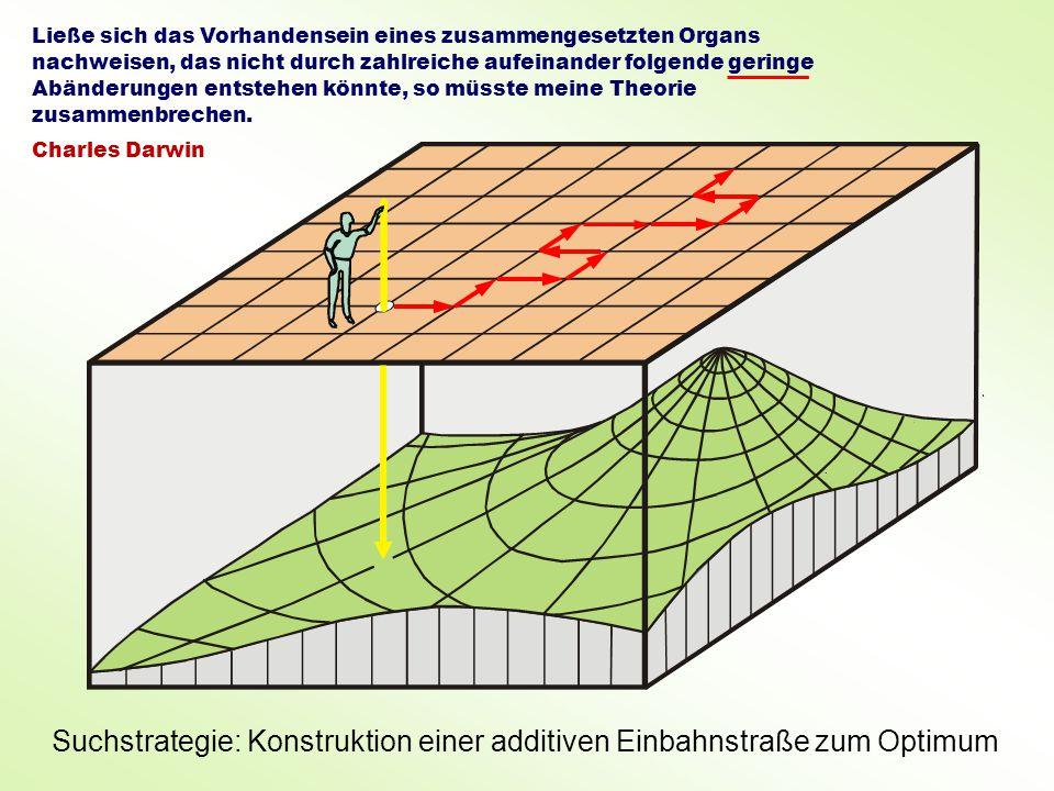 Suchstrategie: Konstruktion einer additiven Einbahnstraße zum Optimum Ließe sich das Vorhandensein eines zusammengesetzten Organs nachweisen, das nicht durch zahlreiche aufeinander folgende geringe Abänderungen entstehen könnte, so müsste meine Theorie zusammenbrechen.