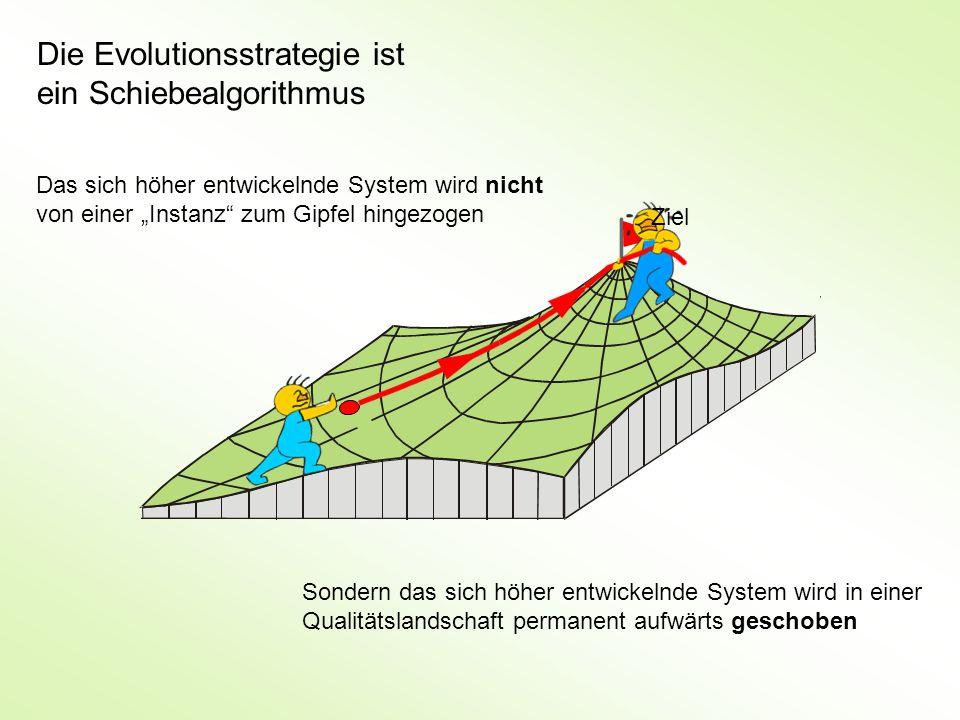 """Die Evolutionsstrategie ist ein Schiebealgorithmus Das sich höher entwickelnde System wird nicht von einer """"Instanz zum Gipfel hingezogen Sondern das sich höher entwickelnde System wird in einer Qualitätslandschaft permanent aufwärts geschoben Ziel"""