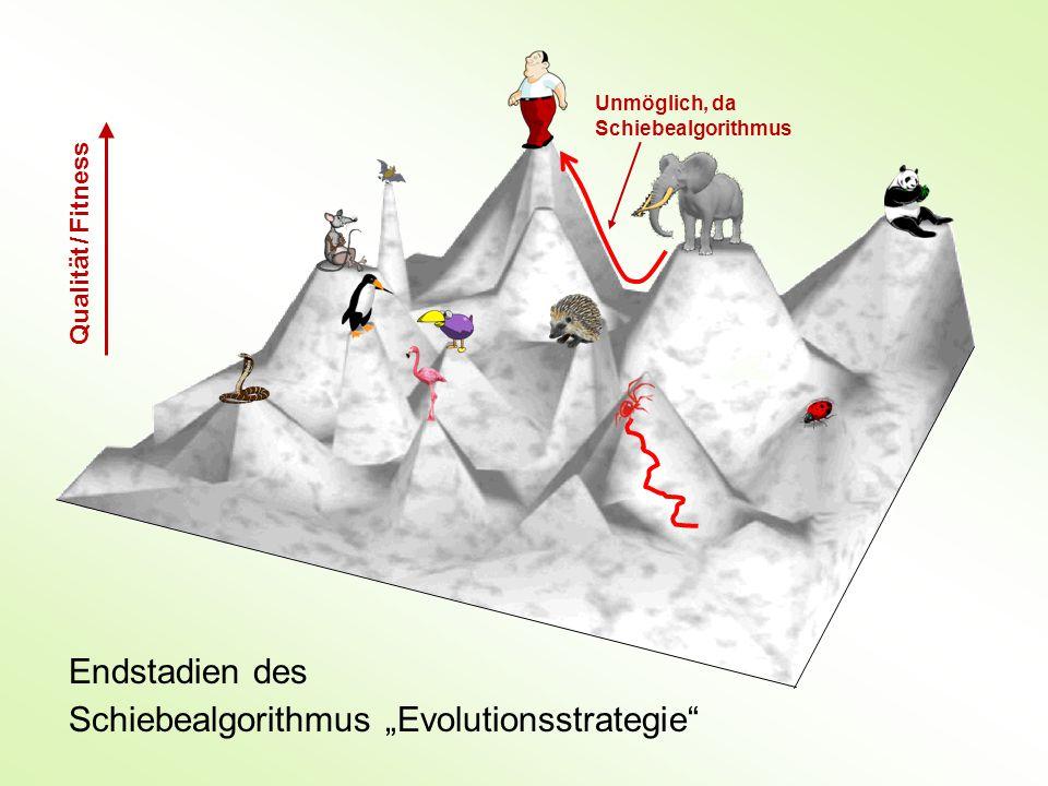 """Endstadien des Schiebealgorithmus """"Evolutionsstrategie Qualität / Fitness Unmöglich, da Schiebealgorithmus"""