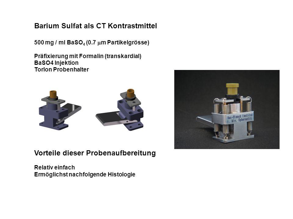 Barium Sulfat als CT Kontrastmittel 500 mg / ml BaSO 4 (0.7  m Partikelgrösse) Präfixierung mit Formalin (transkardial) BaSO4 Injektion Torlon Proben