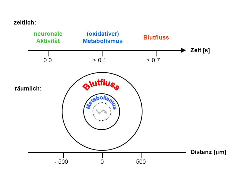 zeitlich: Zeit [s] neuronale Aktivität (oxidativer) Metabolismus Blutfluss 0.0> 0.1> 0.7 räumlich: Distanz [  m] - 5000500