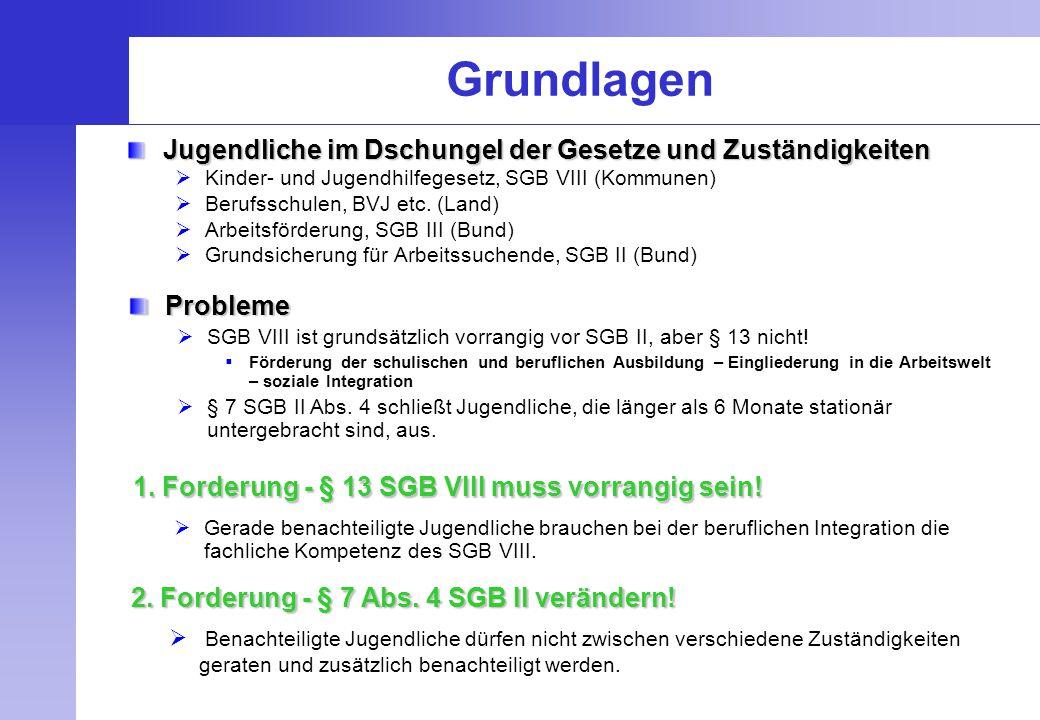 Grundlagen Jugendliche im Dschungel der Gesetze und Zuständigkeiten  Kinder- und Jugendhilfegesetz, SGB VIII (Kommunen)  Berufsschulen, BVJ etc. (La