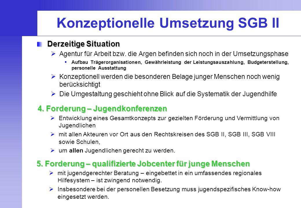 Konzeptionelle Umsetzung SGB II Derzeitige Situation  Agentur für Arbeit bzw. die Argen befinden sich noch in der Umsetzungsphase  Aufbau Trägerorga