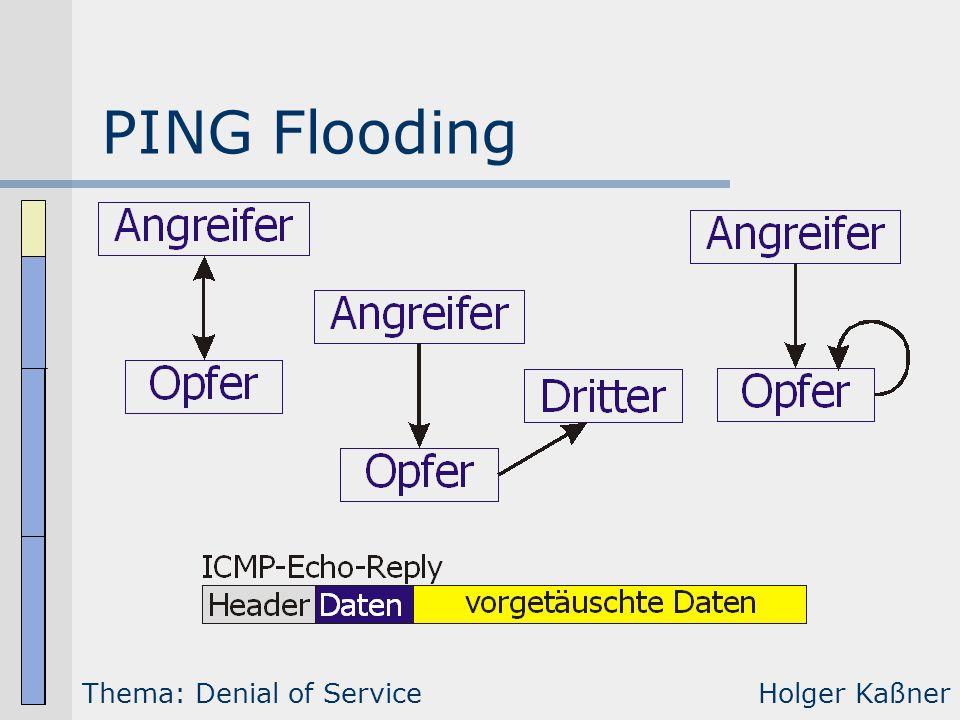 PING Flooding Thema: Denial of ServiceHolger Kaßner