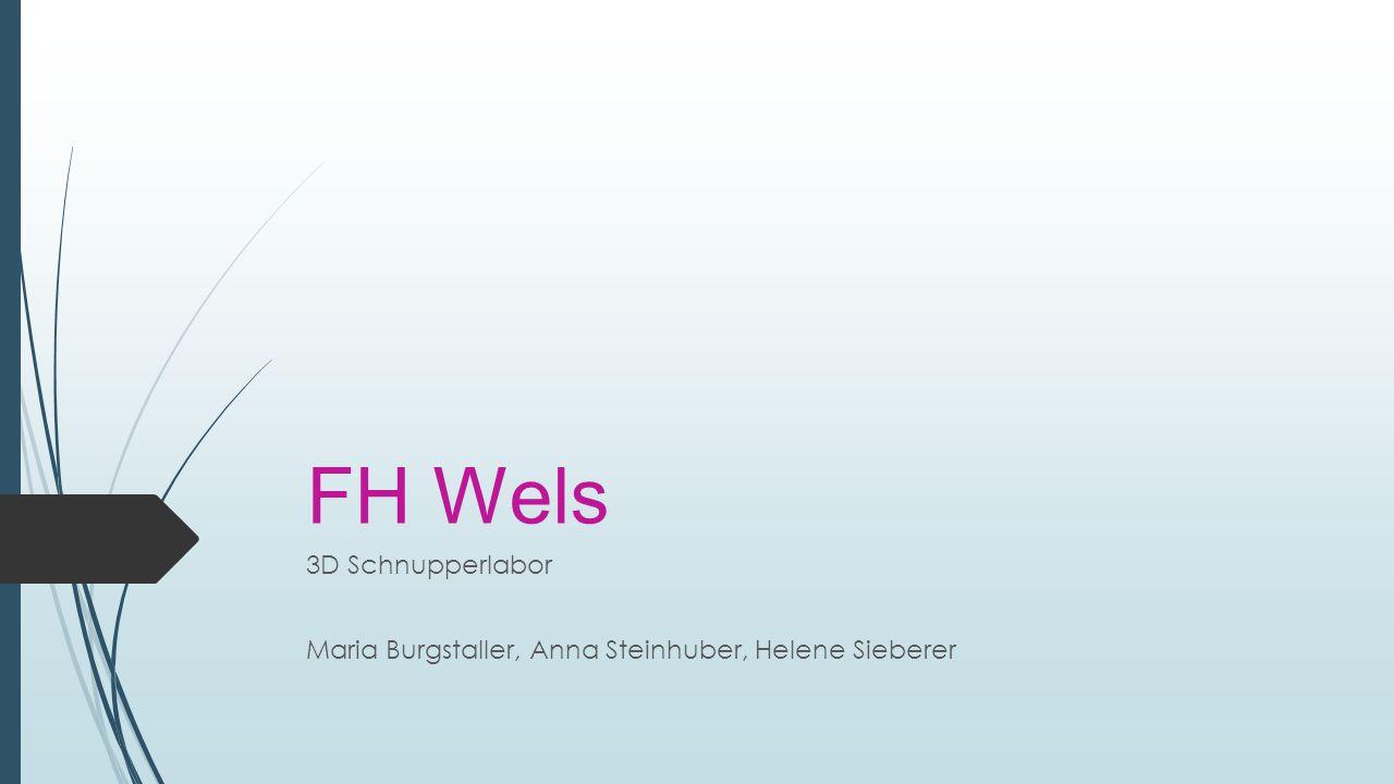 FH Wels 3D Schnupperlabor Maria Burgstaller, Anna Steinhuber, Helene Sieberer