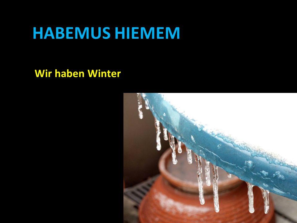 HABEMUS HIEMEM Wir haben Winter