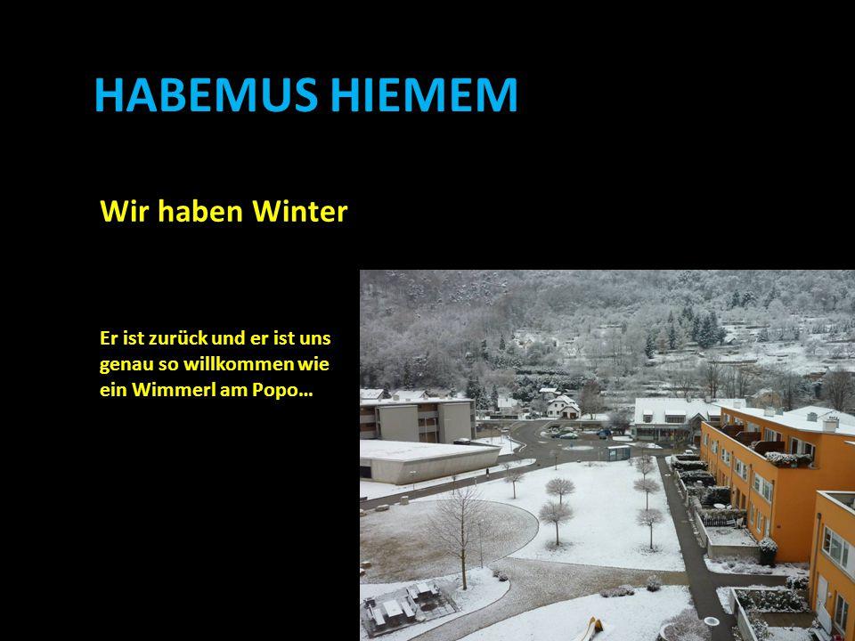 HABEMUS HIEMEM Wir haben Winter Er ist zurück und er ist uns genau so willkommen wie ein Wimmerl am Popo…