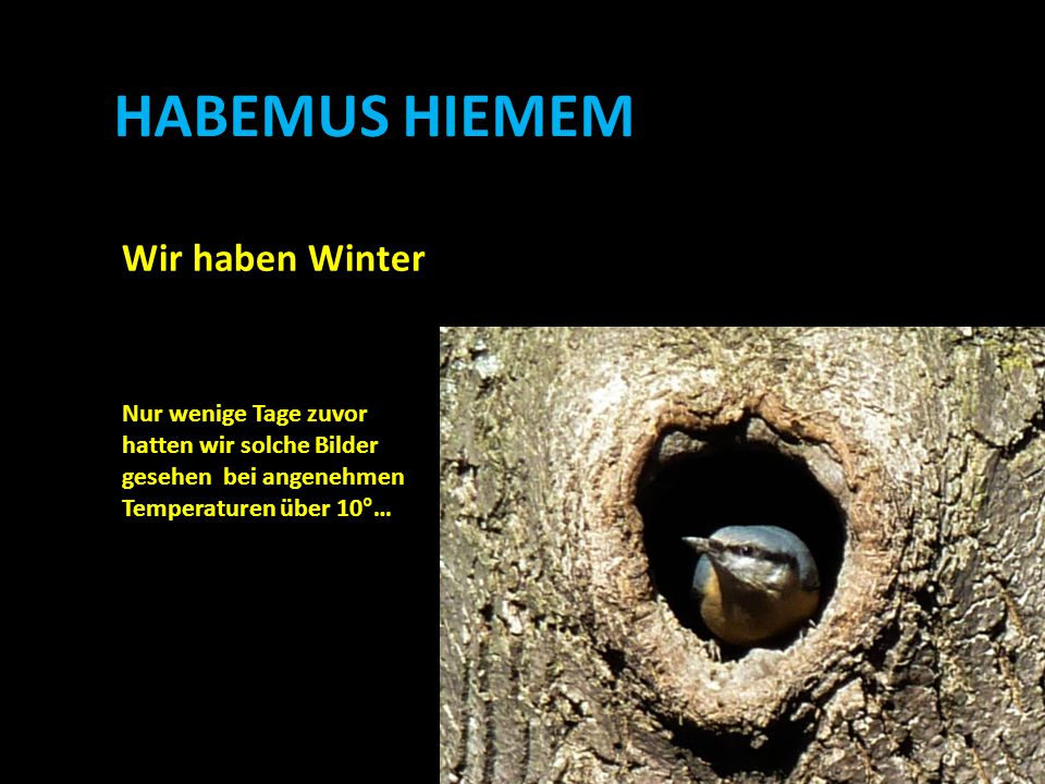 HABEMUS HIEMEM Wir haben Winter Nur wenige Tage zuvor hatten wir solche Bilder gesehen bei angenehmen Temperaturen über 10°…