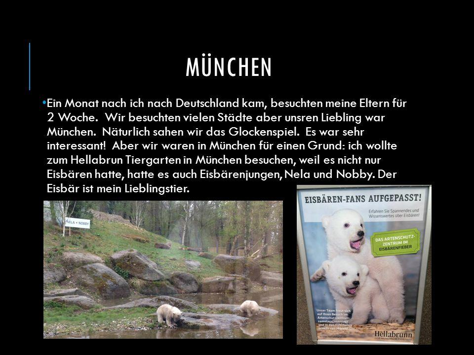 MÜNCHEN Ein Monat nach ich nach Deutschland kam, besuchten meine Eltern für 2 Woche. Wir besuchten vielen Städte aber unsren Liebling war München. Nät