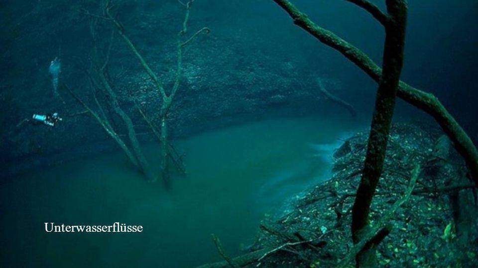 Mammatuswolken sind Beutel, die sich unter einer Wolkendecke bilden und dort hängenbleiben. Sie formieren sich nur selten, wenn sich Luft und Wolken m