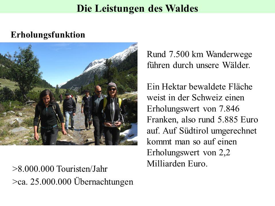 Erholungsfunktion Rund 7.500 km Wanderwege führen durch unsere Wälder. Ein Hektar bewaldete Fläche weist in der Schweiz einen Erholungswert von 7.846
