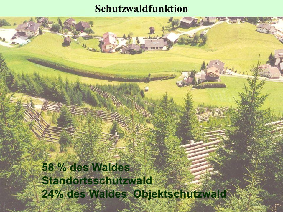58 % des Waldes Standortsschutzwald 24% des Waldes Objektschutzwald Schutzwaldfunktion