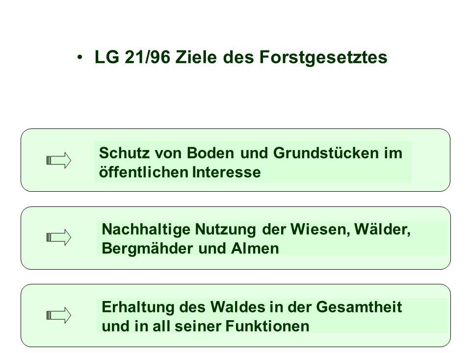 LG 21/96 Ziele des Forstgesetztes Schutz von Boden und Grundstücken im öffentlichen Interesse Nachhaltige Nutzung der Wiesen, Wälder, Bergmähder und A