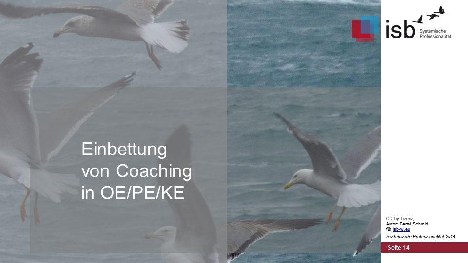 CC-by-Lizenz, Autor: Bernd Schmid für isb-w.euisb-w.eu Systemische Professionalität 2014 Einbettung von Coaching in OE/PE/KE Seite 14 CC-by-Lizenz, Autor: Bernd Schmid für isb-w.euisb-w.eu Systemische Professionalität 2014