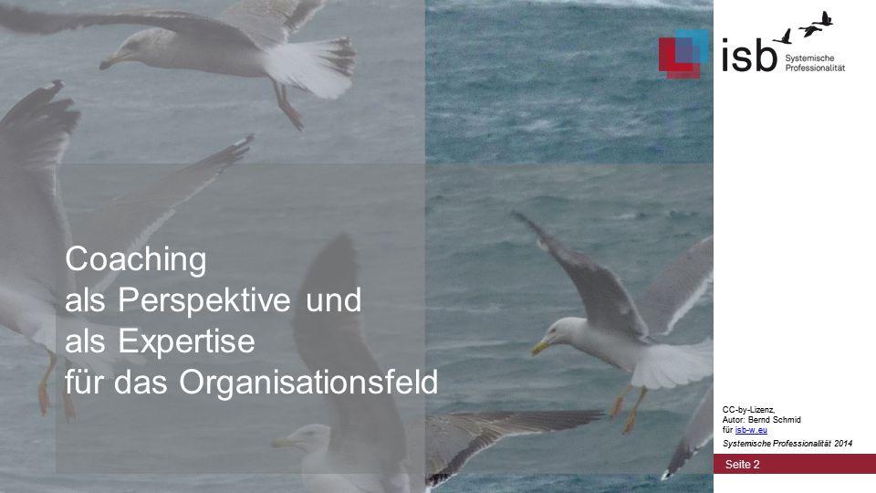 CC-by-Lizenz, Autor: Bernd Schmid für isb-w.euisb-w.eu Systemische Professionalität 2014 Coaching = 4 Augen-Gespräch.