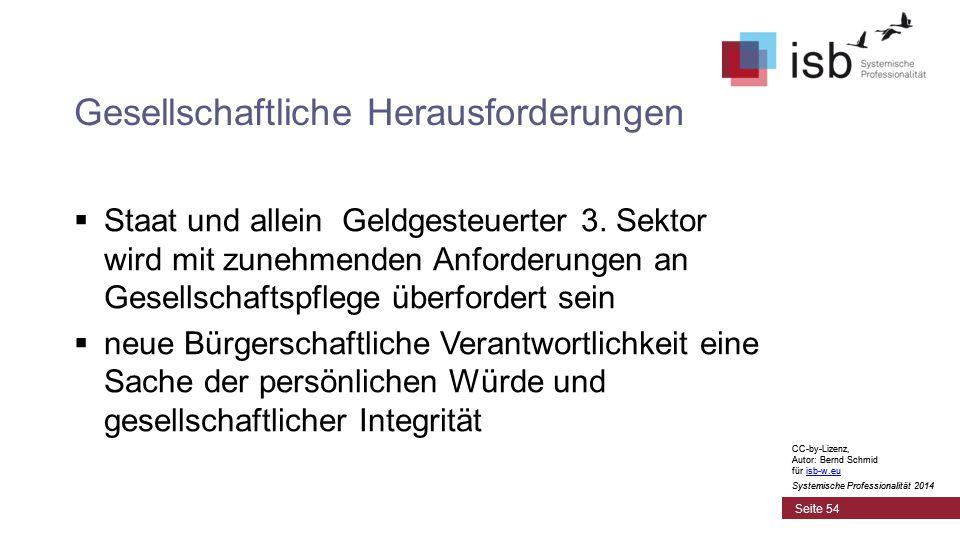 CC-by-Lizenz, Autor: Bernd Schmid für isb-w.euisb-w.eu Systemische Professionalität 2014 Gesellschaftliche Herausforderungen  Staat und allein Geldgesteuerter 3.
