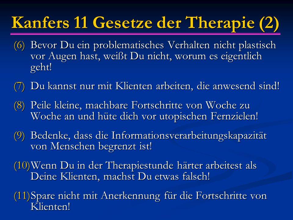 Kanfers 11 Gesetze der Therapie (2) (6)Bevor Du ein problematisches Verhalten nicht plastisch vor Augen hast, weißt Du nicht, worum es eigentlich geht.