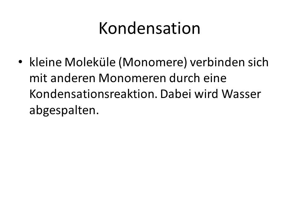 Kondensation kleine Moleküle (Monomere) verbinden sich mit anderen Monomeren durch eine Kondensationsreaktion. Dabei wird Wasser abgespalten.