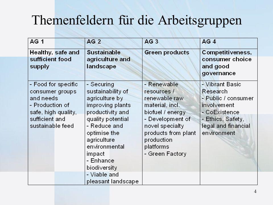 4 Themenfeldern für die Arbeitsgruppen