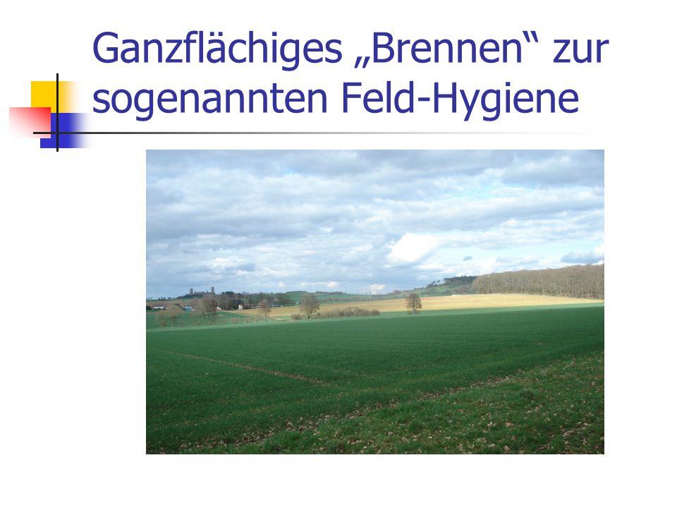 """Ganzflächiges """"Brennen"""" zur sogenannten Feld-Hygiene"""