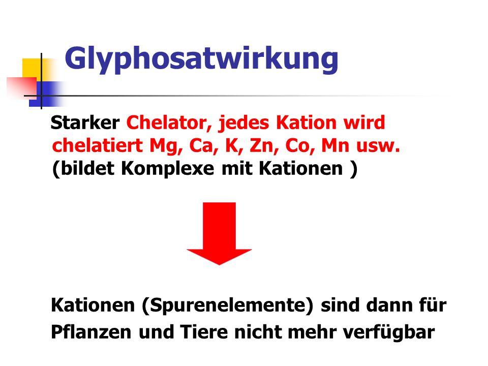 Glyphosatwirkung Starker Chelator, jedes Kation wird chelatiert Mg, Ca, K, Zn, Co, Mn usw. (bildet Komplexe mit Kationen ) Kationen (Spurenelemente) s