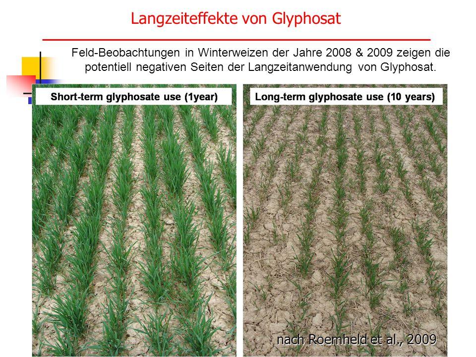 Langzeiteffekte von Glyphosat Feld-Beobachtungen in Winterweizen der Jahre 2008 & 2009 zeigen die potentiell negativen Seiten der Langzeitanwendung vo