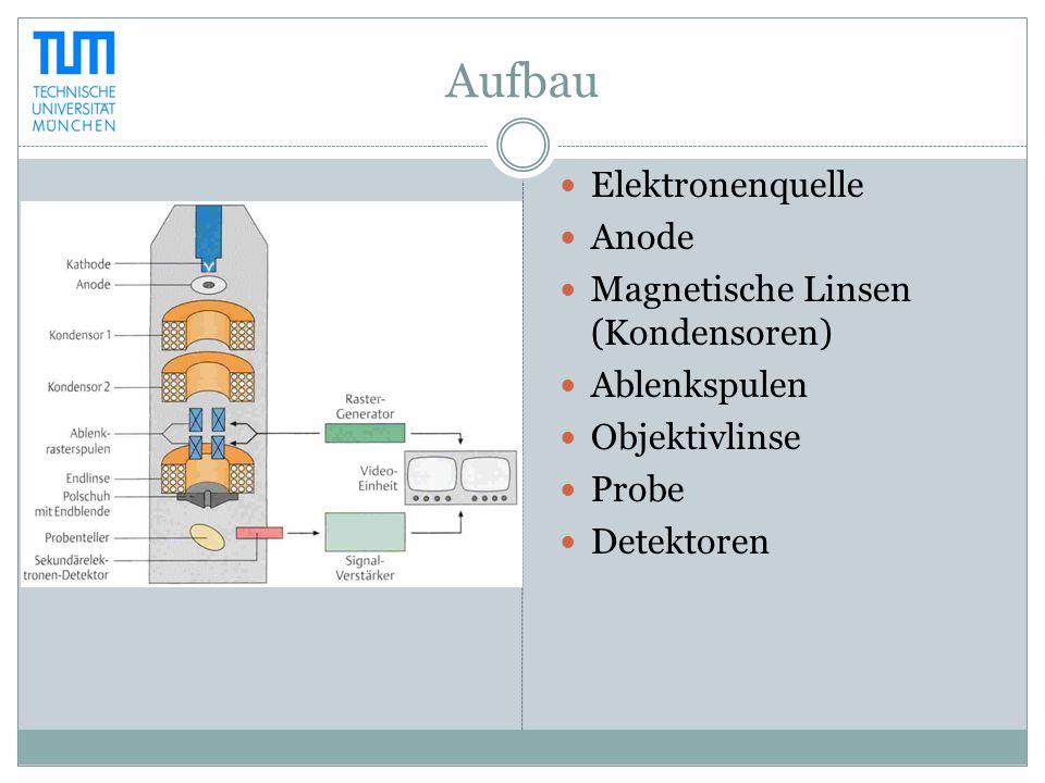 Aufbau Elektronenquelle Anode Magnetische Linsen (Kondensoren) Ablenkspulen Objektivlinse Probe Detektoren