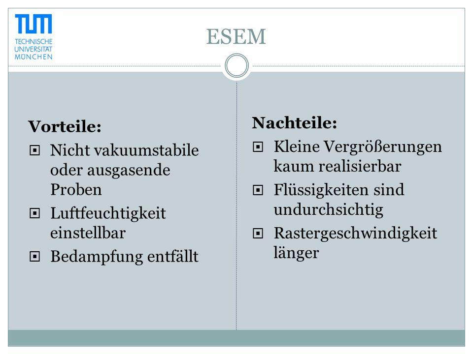 ESEM Vorteile:  Nicht vakuumstabile oder ausgasende Proben  Luftfeuchtigkeit einstellbar  Bedampfung entfällt Nachteile:  Kleine Vergrößerungen ka