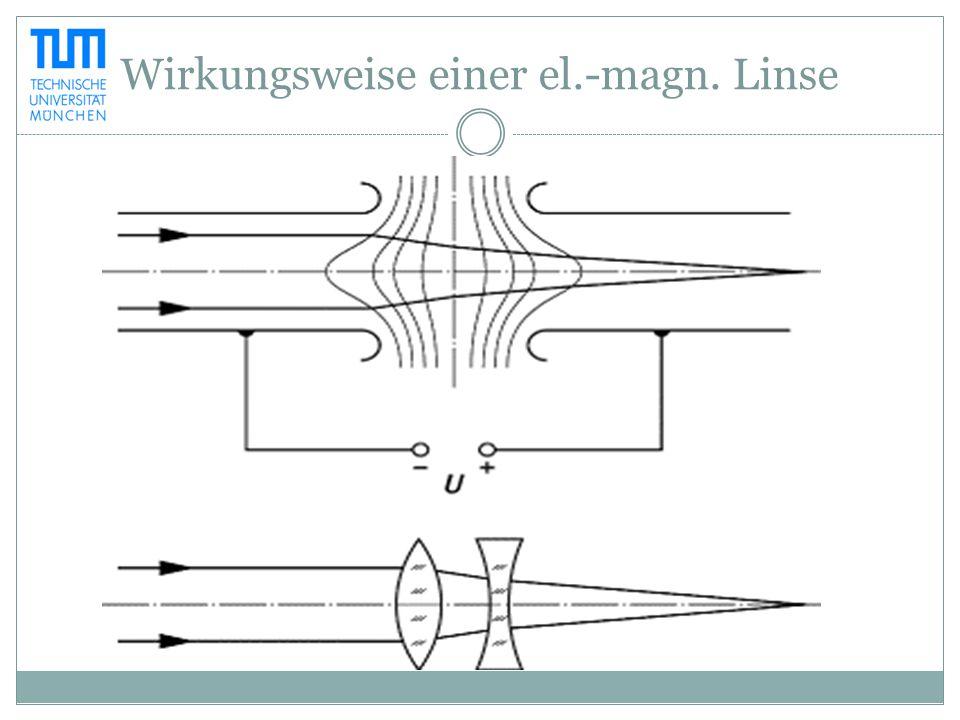 Geschichte 1925 Magnetfeld als Elektronenlinse (Hans Busch) 1931 Erstes Elektronenmikroskop (Ernst Ruska) 1937 Rasterelektronenmikroskop (Manfred von Ardenne) 1965 Erstes kommerzielles Rasterelektronenmikroskop
