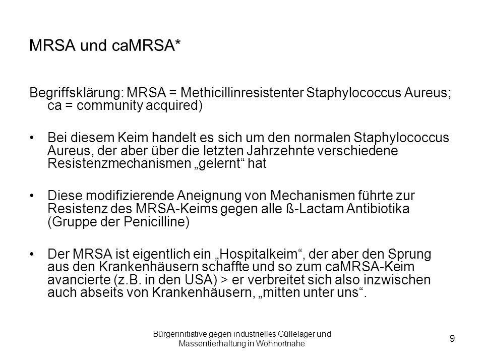 Bürgerinitiative gegen industrielles Güllelager und Massentierhaltung in Wohnortnähe 10 MRSA und cMRSA (Fortsetzung) Mittlerweile zeigt der MRSA auch zunehmende Resistenzen auf andere Reserve-Antibiotika Bereits heute ist ein enorm großer MRSA-Pool unter anderem in der Schweinmast belegt und faktisch nachweisbar In der Schweinemast ist der MRSA als besonders problematisch anzusehen, da sich ein Mikrofilm auf Oberflächen bildet, der beste Überlebens- und damit Anpassungschancen für Keime bietet Außerdem können die MRSA-Keime auf vielen auch nicht- biologischen Oberflächen überleben