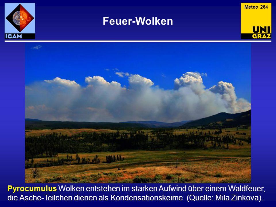 Feuer-Wolken Meteo 264 Pyrocumulus Wolken entstehen im starken Aufwind über einem Waldfeuer, die Asche-Teilchen dienen als Kondensationskeime (Quelle:
