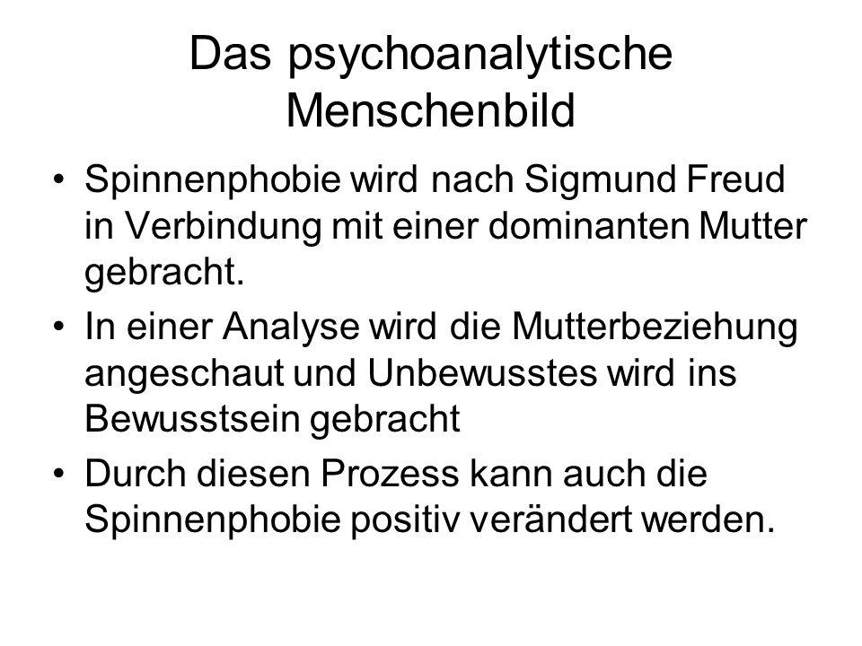 Das psychoanalytische Menschenbild Spinnenphobie wird nach Sigmund Freud in Verbindung mit einer dominanten Mutter gebracht. In einer Analyse wird die