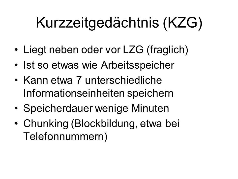 Kurzzeitgedächtnis (KZG) Liegt neben oder vor LZG (fraglich) Ist so etwas wie Arbeitsspeicher Kann etwa 7 unterschiedliche Informationseinheiten speichern Speicherdauer wenige Minuten Chunking (Blockbildung, etwa bei Telefonnummern)