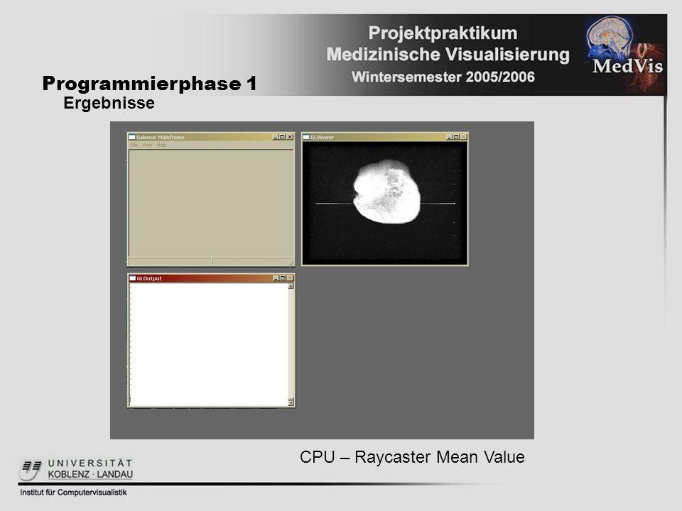 Programmierphase 1 Ergebnisse CPU – Raycaster Mean Value