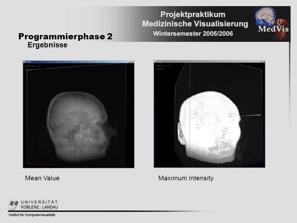 Programmierphase 2 Ergebnisse Mean ValueMaximum Intensity