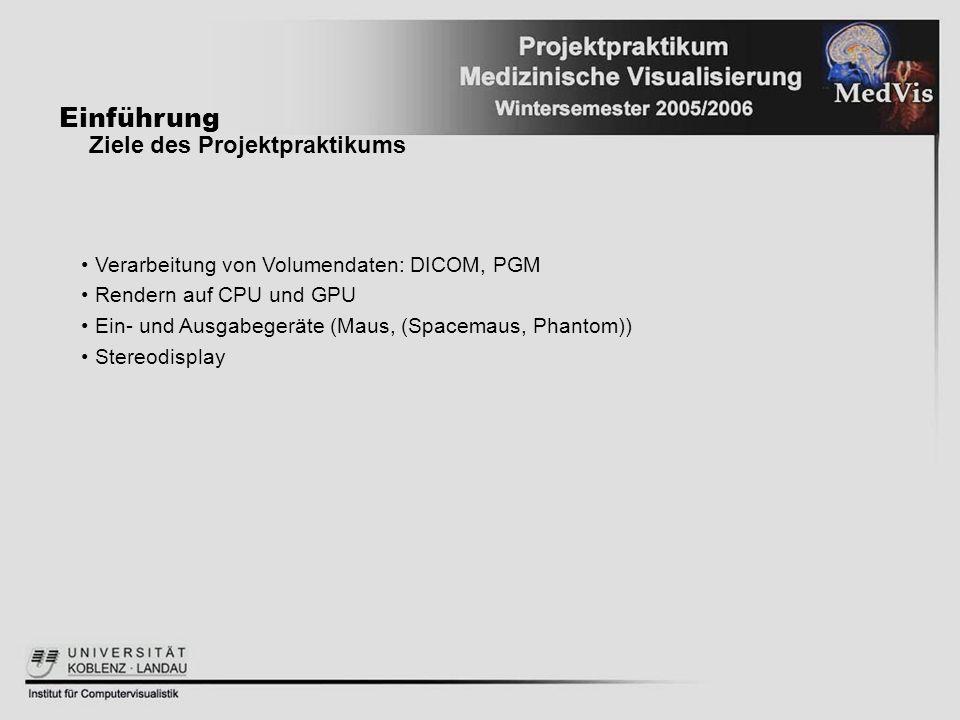Einführung Ziele des Projektpraktikums Verarbeitung von Volumendaten: DICOM, PGM Rendern auf CPU und GPU Ein- und Ausgabegeräte (Maus, (Spacemaus, Pha