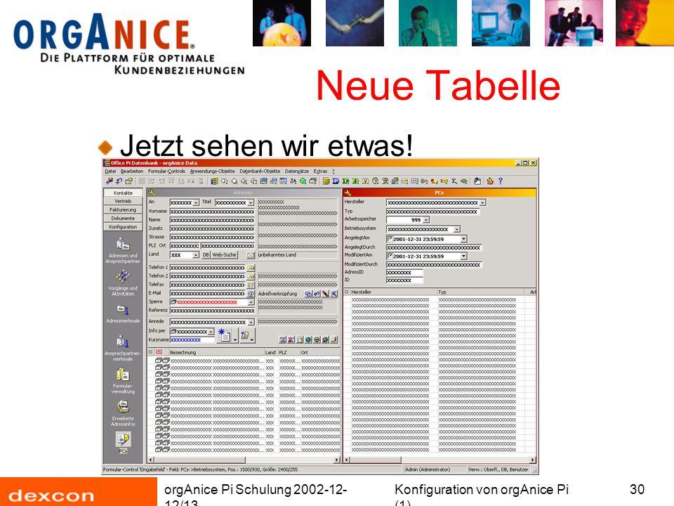 orgAnice Pi Schulung 2002-12- 12/13 Konfiguration von orgAnice Pi (1) 30 Neue Tabelle Jetzt sehen wir etwas!