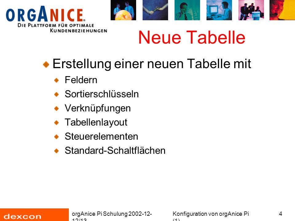 orgAnice Pi Schulung 2002-12- 12/13 Konfiguration von orgAnice Pi (1) 15 Neue Tabelle Feldeigenschaften festlegen (1)